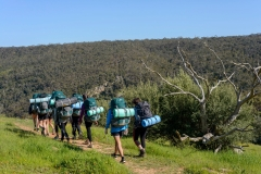 Bushwalking – Enjoy nature and bond with your team mates as you explore the wonderful landscape, flora and fauna.